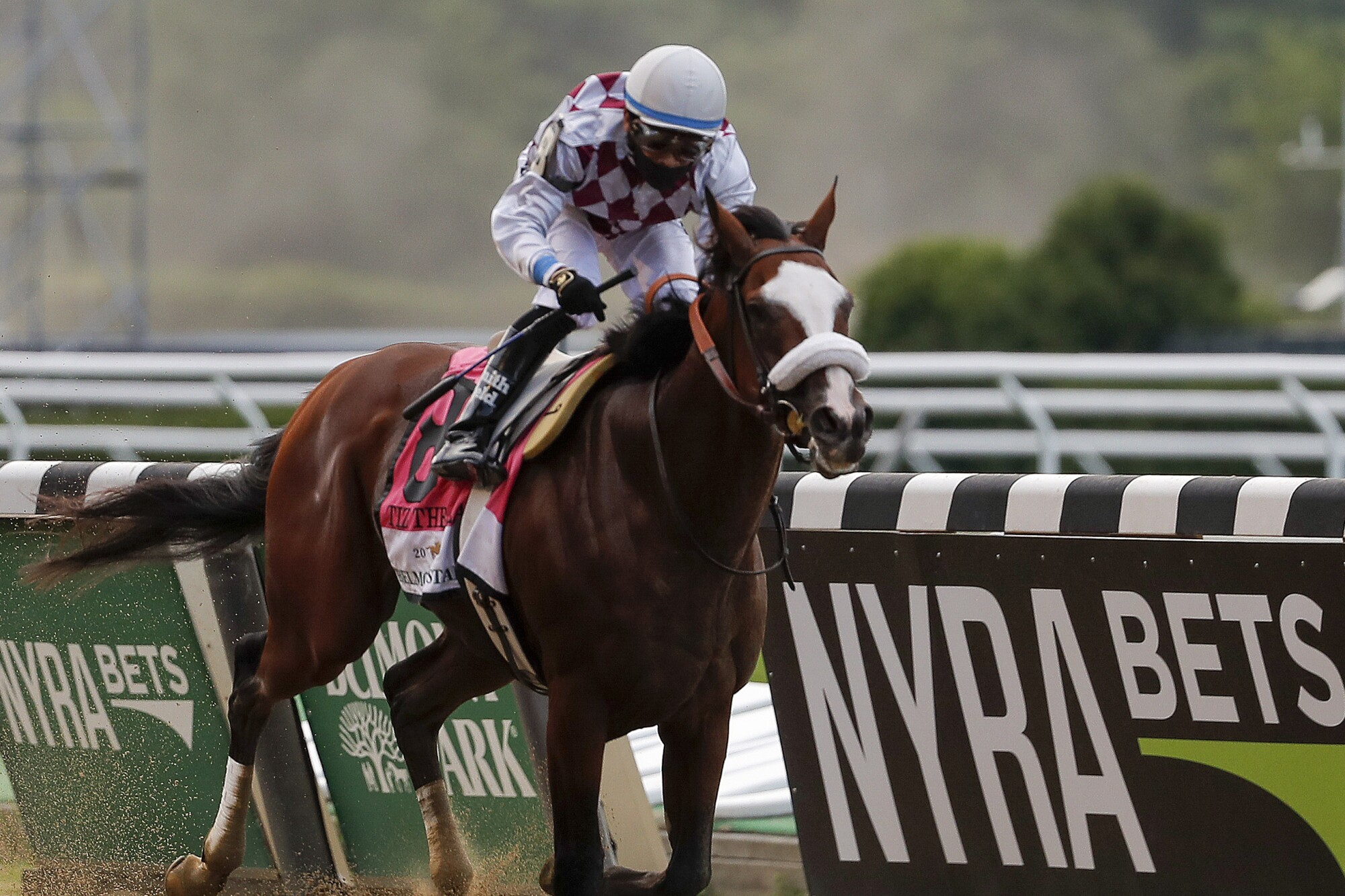 Tiz The Law (8), with jockey Manny Franco aboard, wins the152nd running of the Belmont Stakes horse race.