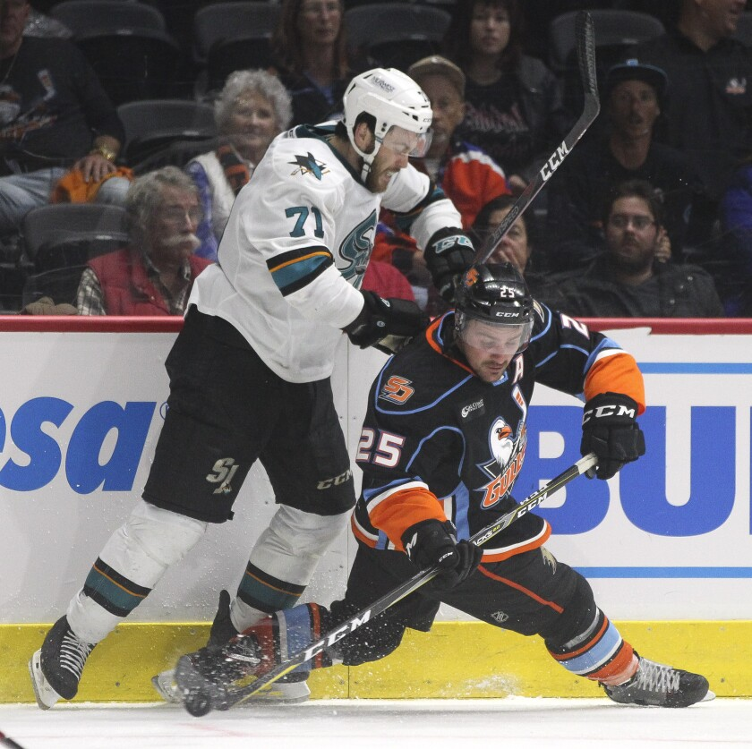 The Gulls' Sam Carrick (25) had a career season and put up six points in four games against San Jose.