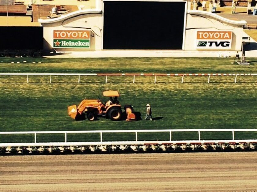 Del Mar turf superintendent Leif Dickinson and his crew spent three days aerifying, watering and moving the inner rail of the turf course out 18 feet in hopes of softening it and making it safer.