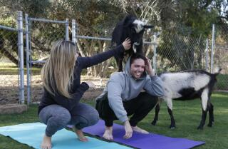 Blind Date: Whatever Floats Your Goat