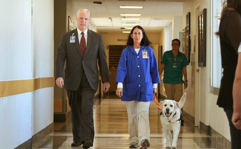 Scripps Health chief executive Chris Van Gorder; his wife, Rosemary; and a therapy dog walk down a hallway at Scripps Memorial Hospital in La Jolla in January 2015. The hospital was one of two in San Diego County that received Medicare's top rating for overall hospital quality on Wednesday. / photo
