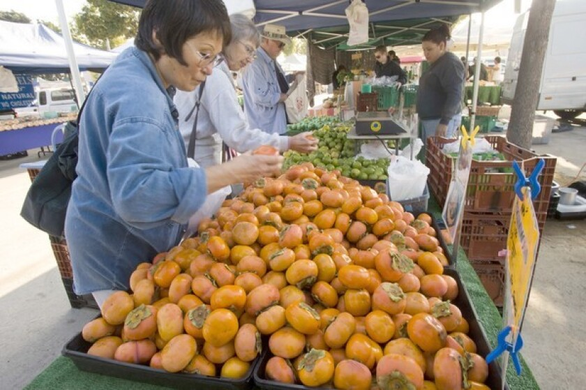 Shopper selects Fuyu-type persimmons