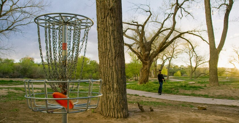 A stock photo of disc golf