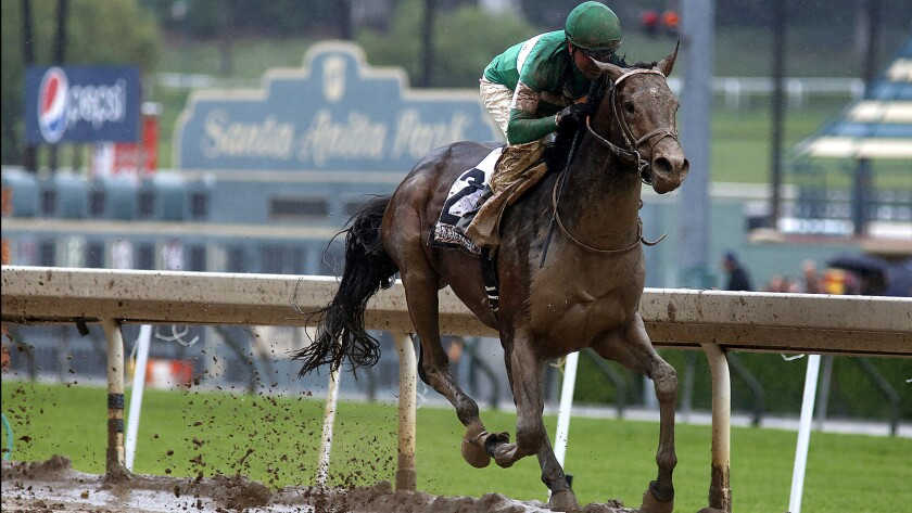 Exaggerators, with jockey Kent Desormeaux aboard winning the Santa Anita Derby on April 9, finished behind the leaders in the Belmont Stakes on Saturday.