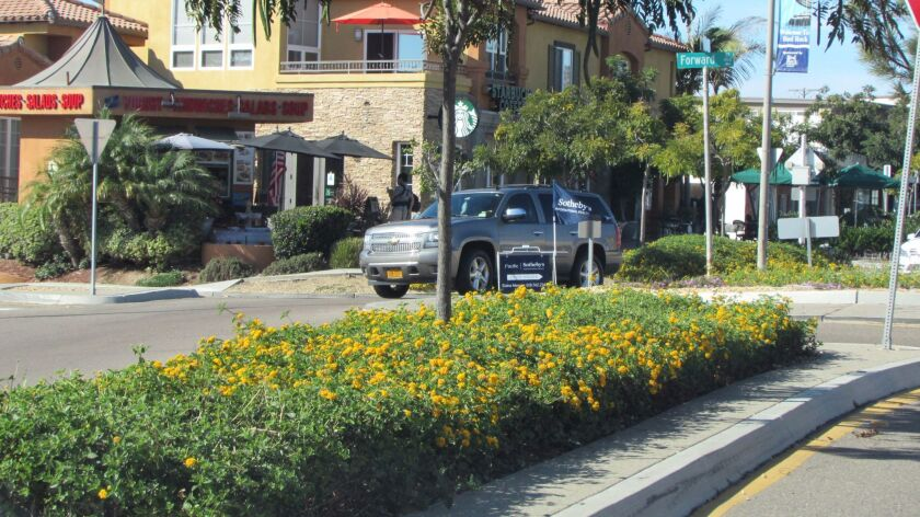 The use of drought-tolerant lantana with its bright yellow flowers adds visibility to the traffic-calming infrastructure in Bird Rock.