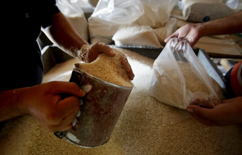 Workers fill bags with rice at a United Nations food aid distribution center, in the Shati refugee camp in Gaza City, Wednesday, Aug. 6, 2014. A cease-fire between Israel and Hamas that ended a month of war was holding for a second day Wednesday, ahead on negotiations in Cairo on a long-term truce and a broader deal for the war-ravaged Gaza Strip. (AP Photo/Hatem Moussa)