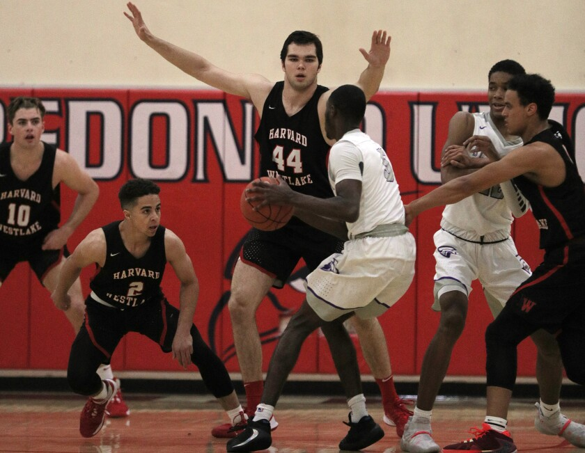 Harvard-Westlake's 6-foot-10 Mason Hooks towers over people on the basketball court while averaging 15 points and 14 rebounds for the Wolverines.