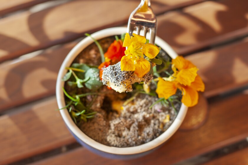 Handmade gnudi and vegetables are hidden under a topsoil of grilled bread crumbs and flowers in the surprise flower pot dish at Avant restaurant in Rancho Bernardo Inn.