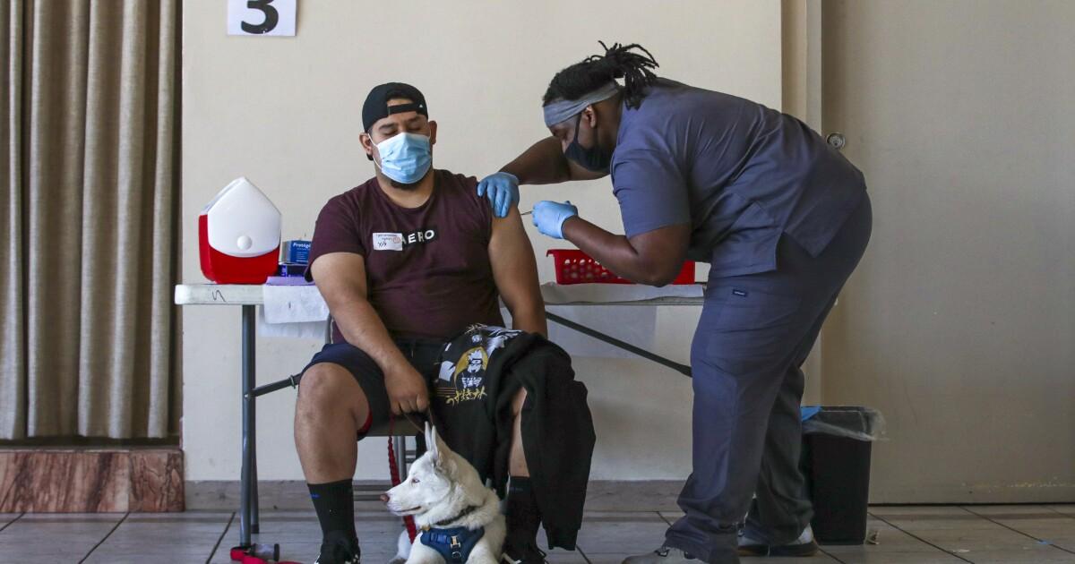 Is California coronavirus variant preventing spring surge? - Los Angeles Times