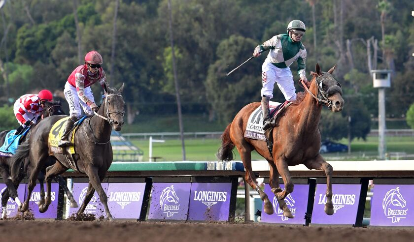 Midnight Bisou, No. 4, owned by Oceanside's Jeff Bloom, entered Saturday's Breeders' Cup Distaff as the favorite before a rally against Blue Prize failed down the stretch.