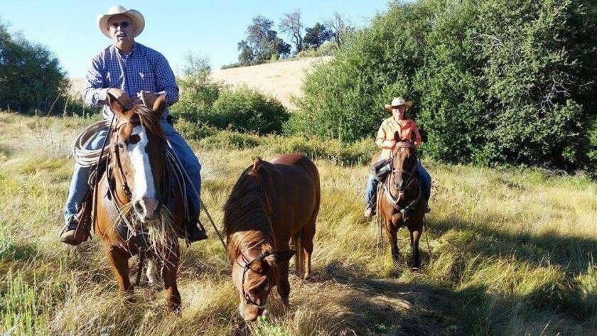 Chad Waldhauser leads Royal out to his owners after the horse was lost in Cuyamaca Rancho State Park. Riding up the rear is Waldhauser's wife, Cindy Nicholson.