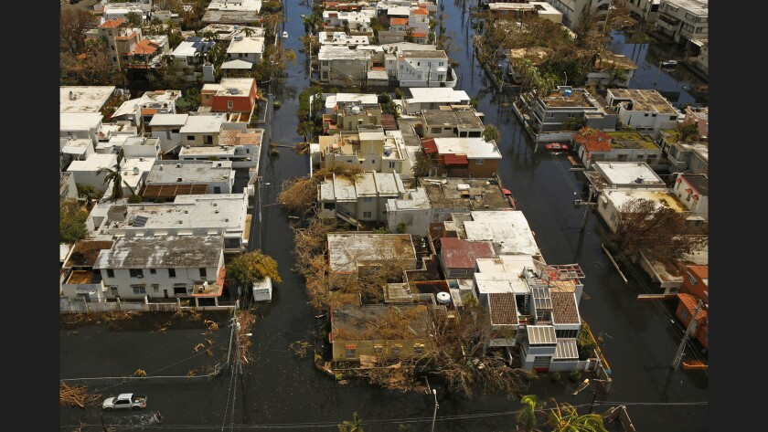 <p>Hurricane Maria toppled electrical wires, trees and vegetation in much of San Juan, even ripping&