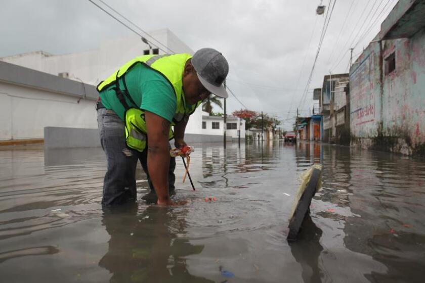 La tormenta Fernand dejará lluvias torrenciales en este y noreste de México
