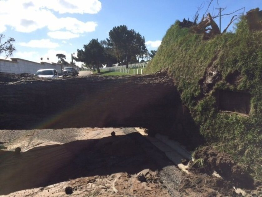 Some grave sites at Fort Rosecrans National Cemetery were damaged after a large Torrey Pine tree was uprooted during strong winds.