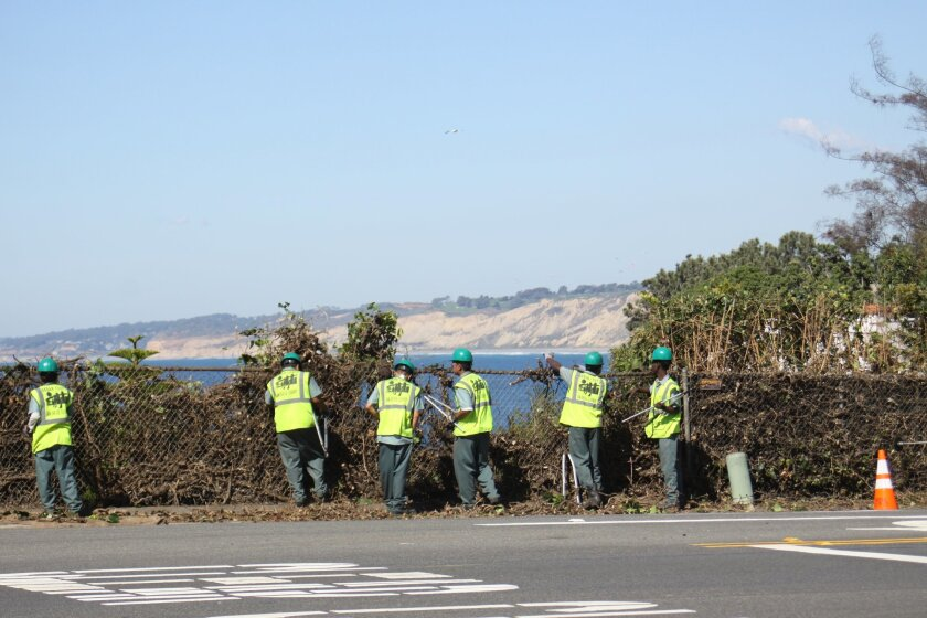 Work begins to remove vegetation and lower the fence along Torrey Pines Road at Amalfi Drive to return La Jolla's world-class ocean views to the public.