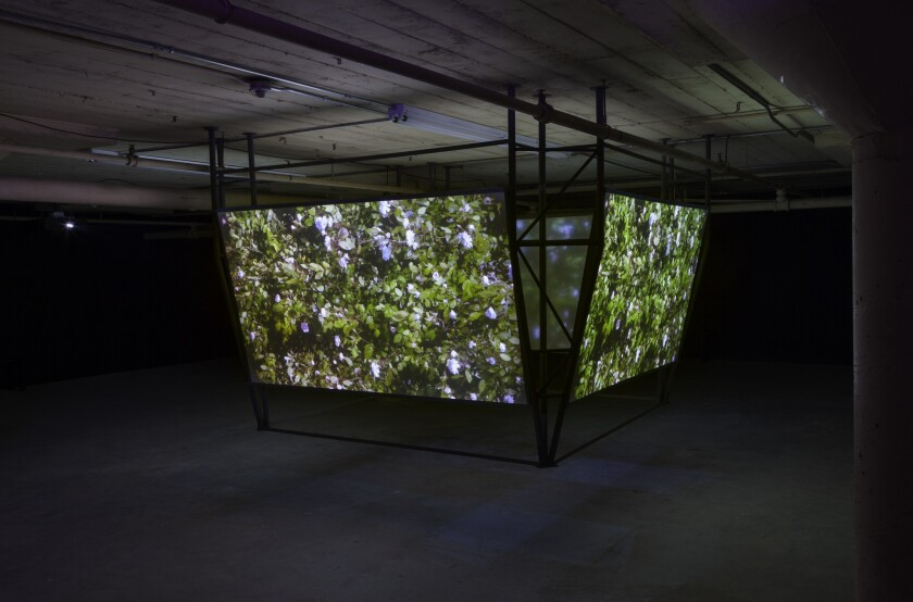 """""""The Halftime Show,"""" a video installation by Jesse Fleming, is at 356 Mission."""
