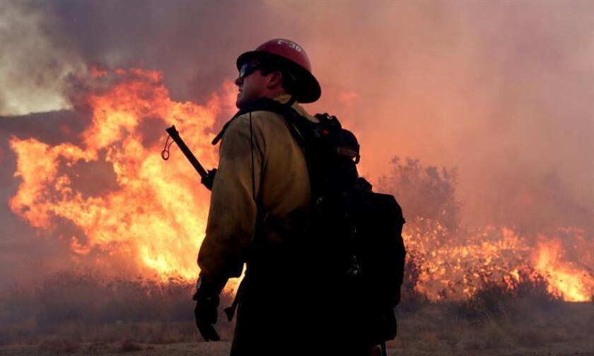 El número de víctimas mortales ascendió al menos a una decena en el incendio provocado que arrasa desde el lunes un parque nacional del estado de Tennessee y dos pueblos cercanos, con 14.500 evacuados, 700 edificios destruidos, casi 17.100 hectáreas quemadas y 74 hospitalizados. EFE/Archivo