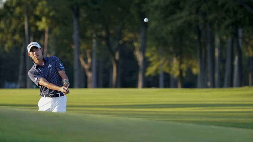 Collin Morikawa, of the United States, chips onto the eighth green during the second round of the US Open Golf Championship, Friday, Sept. 18, 2020, in Mamaroneck, N.Y. (AP Photo/John Minchillo)