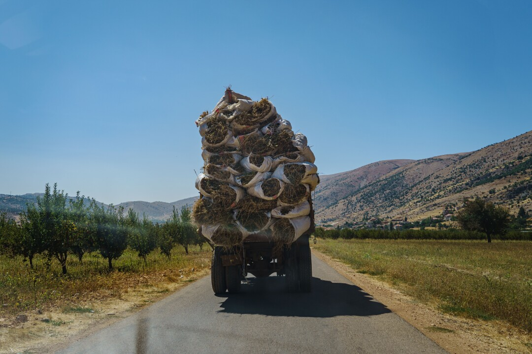 A truck full of dried cannabis plants is transported to an unknown location from a local plantation in Yammouneh, Lebanon.