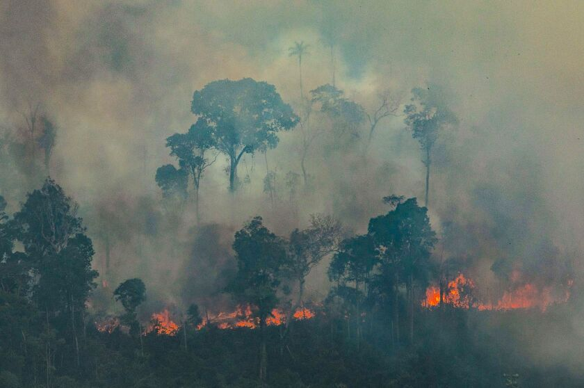 A handout aerial picture released by Greenpeace shows a patch of forest on fire in the municipality of Candeias do Jamari, close to Porto Velho in Rondonia State, in the Amazon basin in northwestern Brazil.