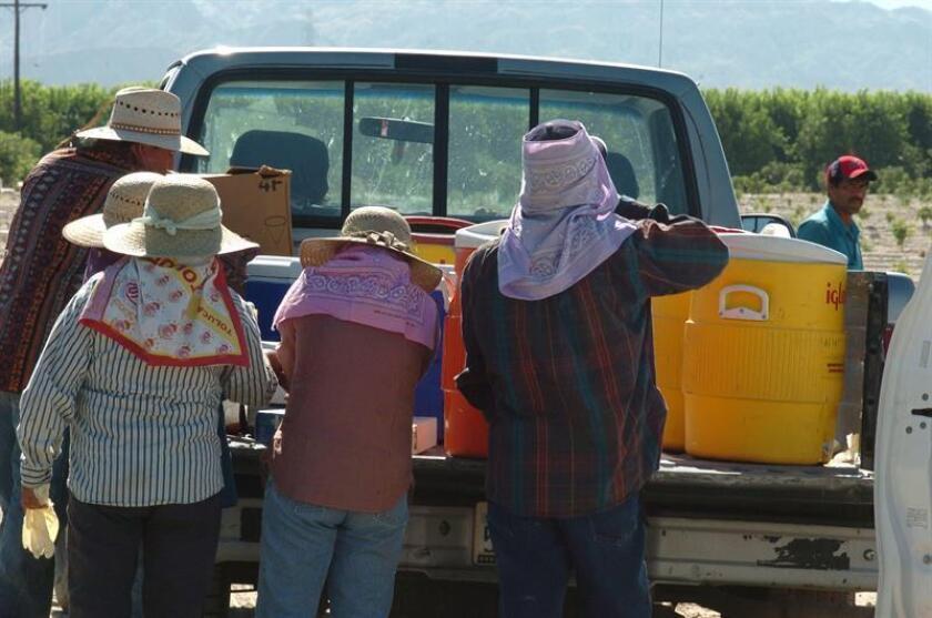 Un inmigrante latino residente en Nebraska se declaró culpable en la corte federal de colaborar en una operación que desde 2015 llevaba inmigrantes mexicanos indocumentados a ese estado y al de Minnesota para trabajar en granjas locales, revelaron hoy autoridades federales. EFE/Archivo