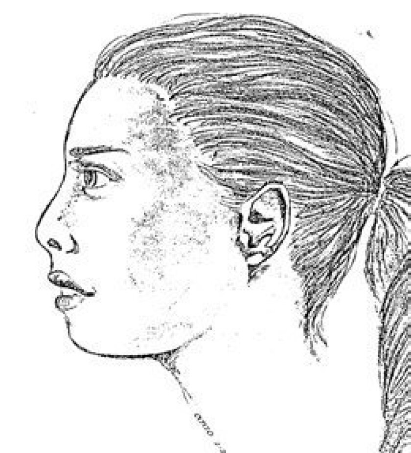 Profile sketch of Jane Doe, made by the Sheriff's Department.