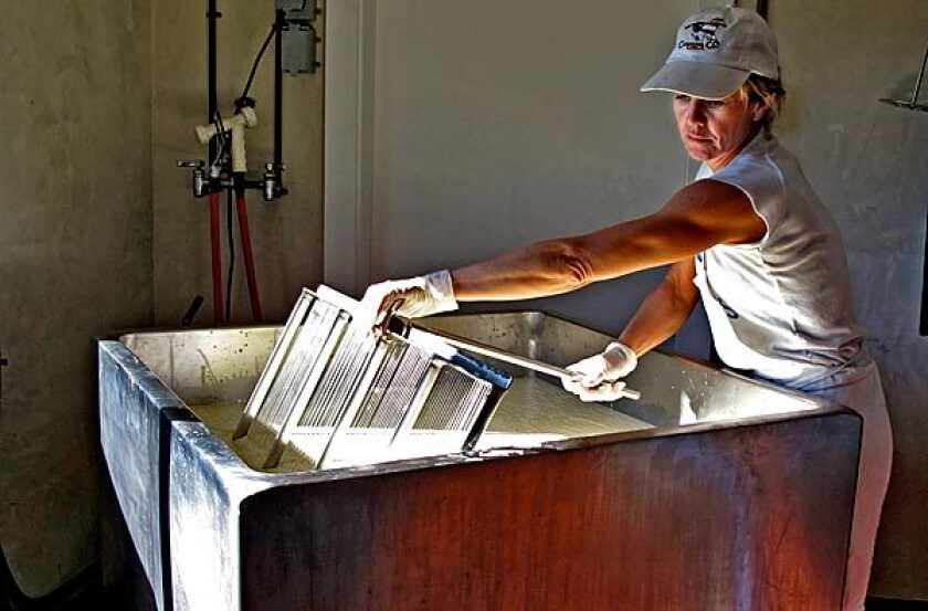Karen Bianchi-Moreda prepares cheese. Her Estero Gold cheese has a rich Alpine character.