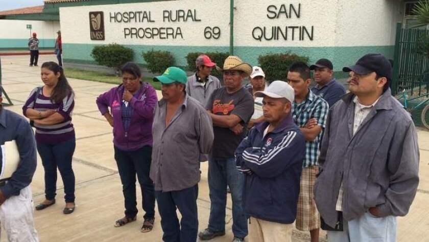 En el valle de San Quintín cerca de 80 mil trabajadores levantan principalmente las cosechas de fresa, frambuesa y mora