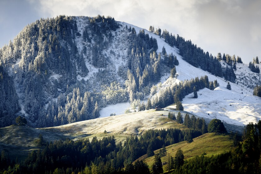 Fresh snow is visible on the slopes of the Moleson mountain near the still green pastures, on Saturday, 26 September 2020, at Moleson in Gruyere, Switzerland. (Laurent Gillieron/Keystone via AP)