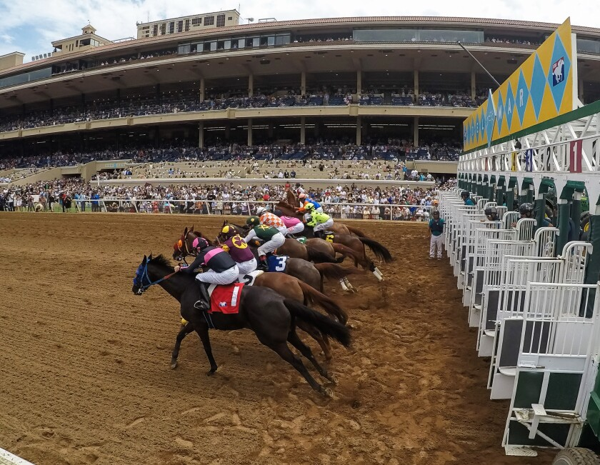 Opening Day at Del Mar Racetrack