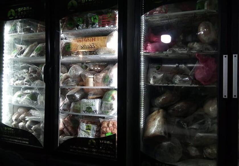 Fotografía cedida por la Procuraduría Federal de Protección al Ambiente (Profepa) hoy, viernes 1 de junio de 2018, que muestra refrigeradores con carne no acreditada, en Ciudad de México (México). EFE/Profepa/SOLO USO EDITORIAL / NO VENTAS