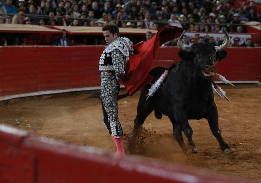 """El torero mexicano Arturo Saldivar fue registrado este domingo al lidiar su primer toro de la tarde, """"Bienvenido"""" de 490 Kg, durante la segunda corrida de la Temporada Grande 2017-2018 de la Plaza de Toros México, en Ciudad de México. EFE"""