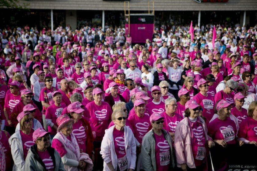 The number of cancer survivors in the U.S. is projected to rise 30% in the next decade, according to a new report from the American Cancer Society. These breast cancer survivors gathered in Peoria, Ill., in May.