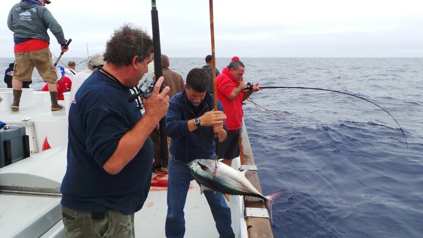 Anglers on offshore trips beyond Mexico's 12-mile territorial waters will be exempt from having to use a passport for documentation, but those fishing inshore inside 12 miles will need a passport to obtain a visa to fish Mexico.