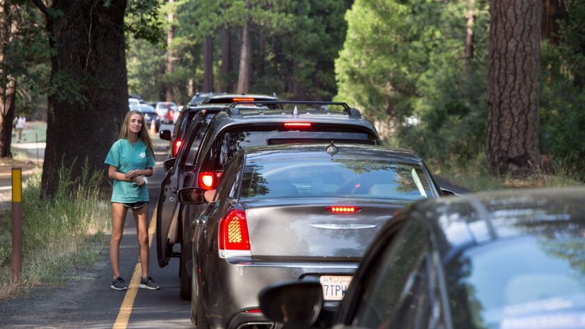 Traffic is at a standstill and visitors are out of their cars on the valley floor while a bus lane is empty and off-limits to visitors at Yosemite National Park.
