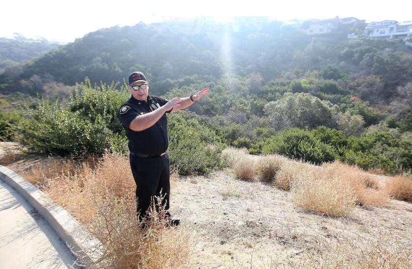 Newport Beach keeps an eye on Buck Gully's brush during fire 'season' that runs all year