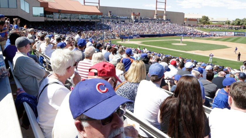 Blue baseball caps predominate as Chicago fans watch the Cubbies play the New York Mets in Las Vegas on April 1.