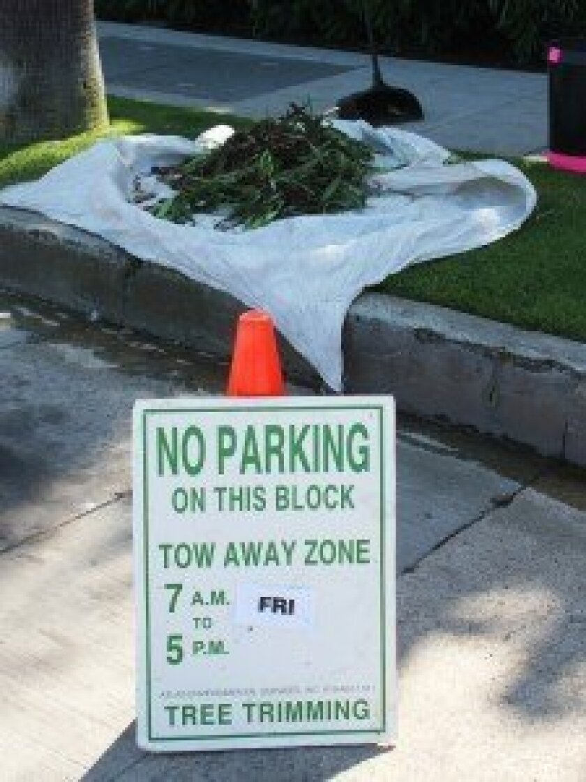 Workers are asking the public not to move their signs and cones, which will delay ongoing palm tree trimming in the Village.