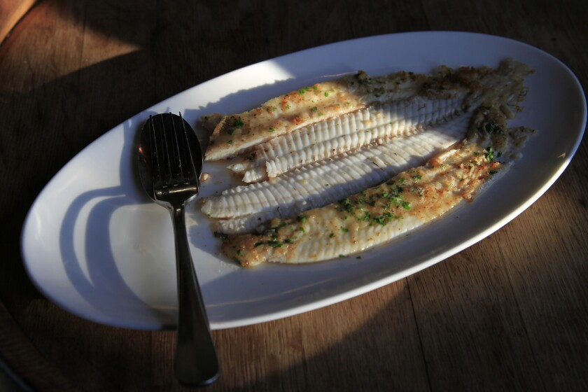 West Coast groundfish are bottom-dwelling fish, including species such as Pacific Dover sole.