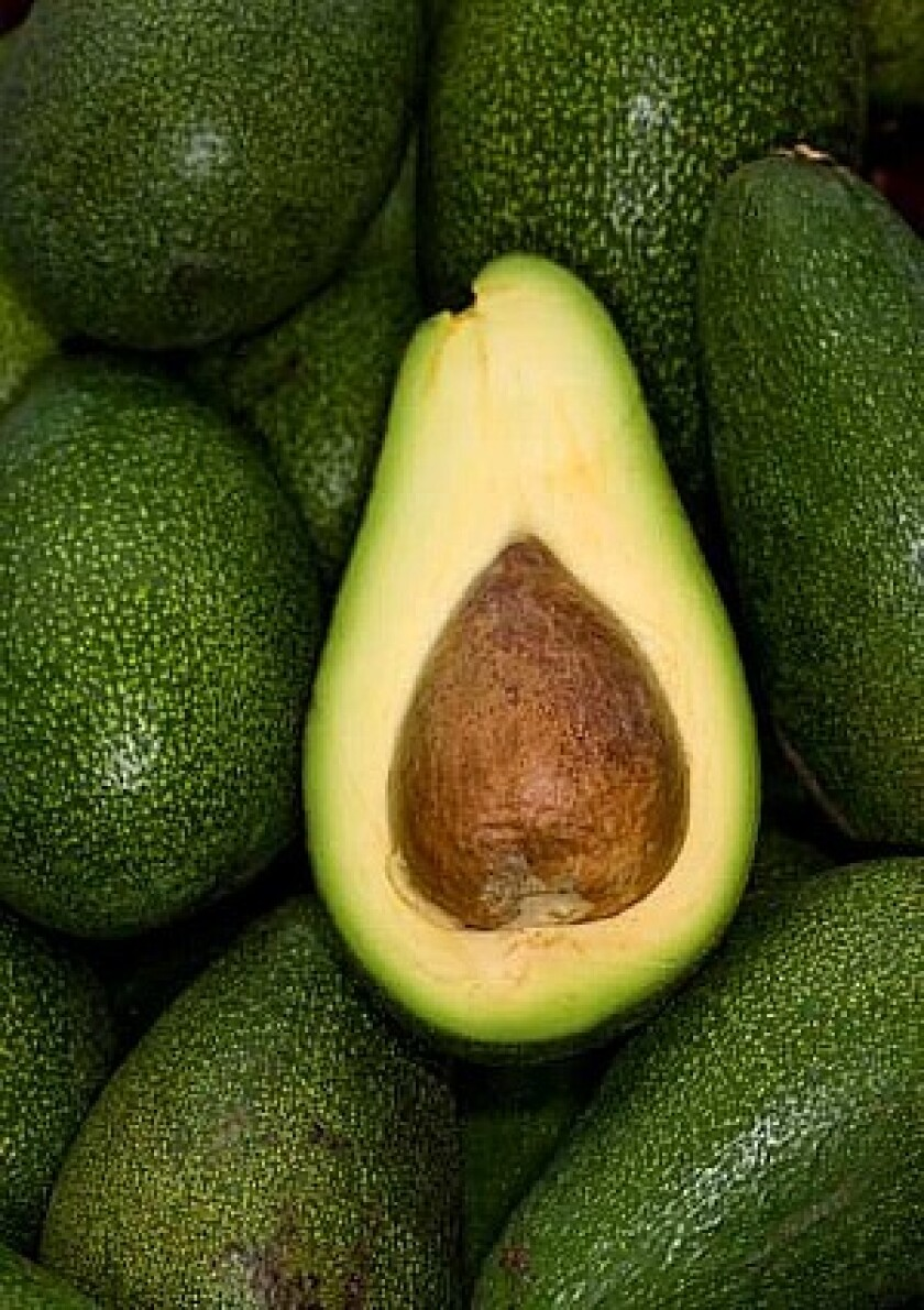 Fuerte avocado, just coming into season, grown by Gama Farms in Valley Center, at the Manhattan Beach farmers market.