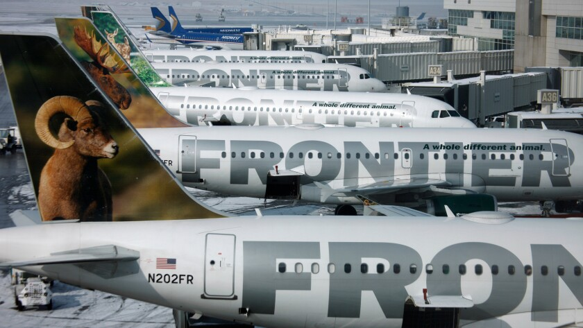 Frontier Airlines jetliners sit stacked up at Denver International Airport. The carrier is looking to hire 800 flight attendants and 300 pilots by the end of next year.