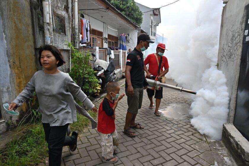 INDONESIA-HEALTH-DENGUE