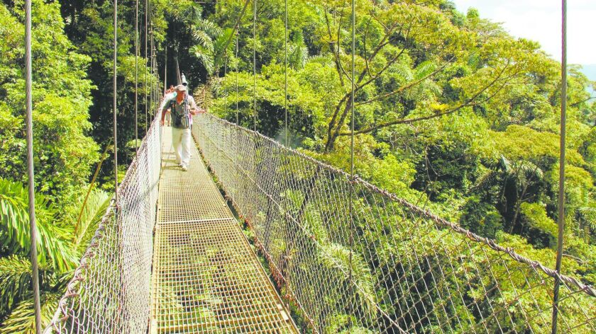Suspension bridges give unique views of the cloud forest in Arenal Hanging Bridges nature reserve in Costa Rica.