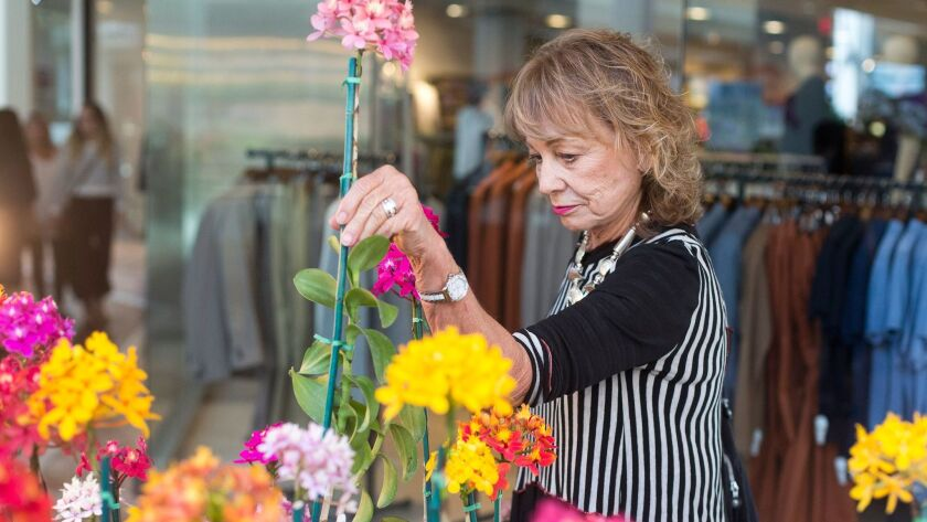 Karen Olmsted chooses an Epidendrum during the 2016 Southern California Spring Garden Show. This year's event is Thursday through Sunday at South Coast Plaza in Costa Mesa.