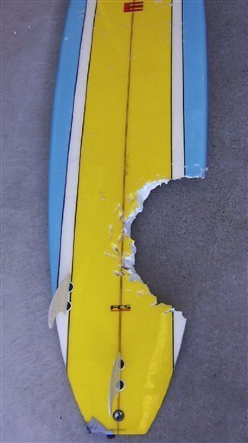 In this photo released by Tasmania Police and distributed via AAP Image, a surfboard which had a chunk taken out of it by a great white shark in Binalong Bay, Tasmania, Australia, Jan. 11, 2009 is shown. Across Australia, edgy beachgoers are questioning their safety following a string of attacks an