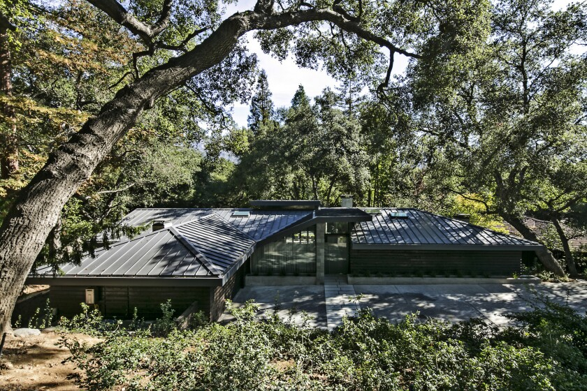 Sunnie Kim's midcentury home is set below street level and embraced by giant redwood, oak and maple trees.