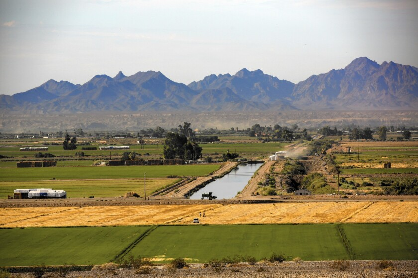 Farmers in California's Palo Verde Valley are paid to fallow a portion of their land in an agreement with the Metropolitan Water District that allows the agency to bolster supplies to its customers.