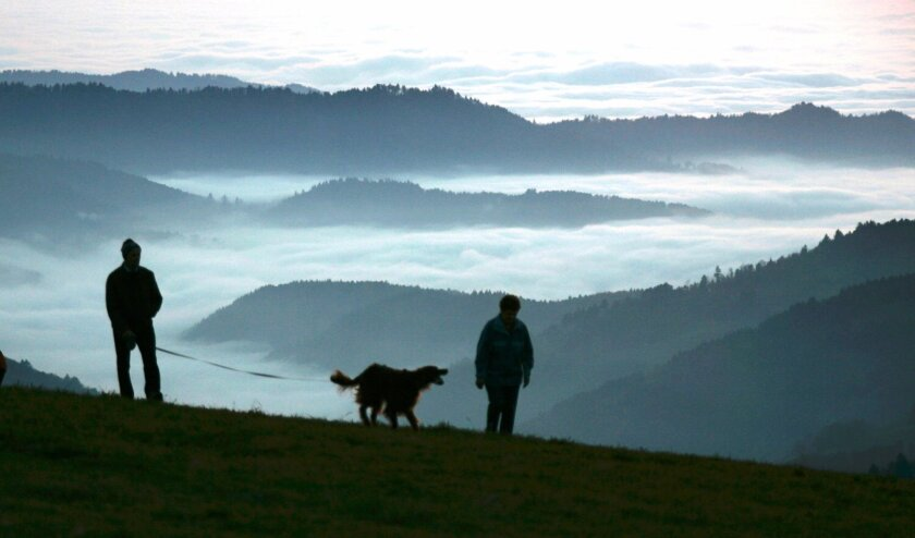 FILE - In this Nov. 13, 2005 file photo, a man and a woman walk a dog along the mountain Schauinsland near Freiburg, southern Germany, with fields of fog in the Rhine valley below. The long-debated question of where dogs first appeared has always been complex, and a new study suggests it may have t