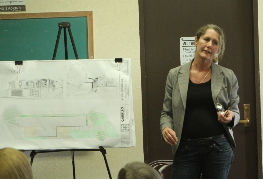 Architect Paige Koopman traveled all the way from New Zealand to make her presentation on behalf of artist Jeff Robin.