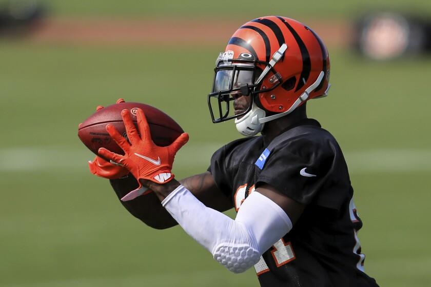 Cincinnati Bengals cornerback Mackensie Alexander makes a catch during practice Aug. 17